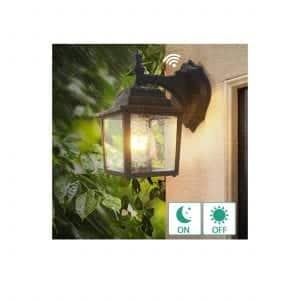 Lamomo Dusk to Dawn Outdoor Wall Light
