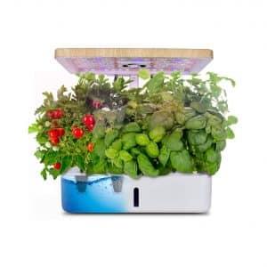 Moistenland Hydroponics Growing System 12 Plant Pots