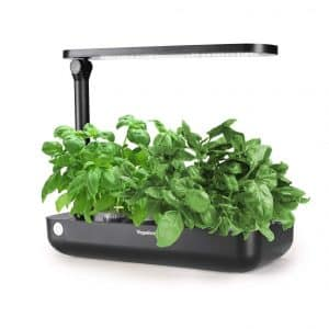 VegeBox Hydroponics Herb Growing System Indoor Kit