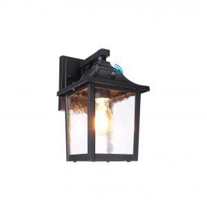 LEONLITE Dusk to Dawn Exterior Motion Sensor Wall Light