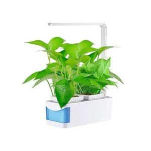 AIMCAE Indoor Hydroponic Growing System Herb Garden Kit