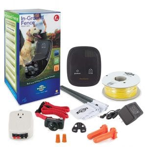 PetSafe In-Ground Invisible Electric Fence for Cats