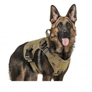rabbitgoo No-Pull Tactical Dog Harness