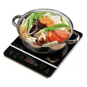Rosewill RHAI-16001 1800W Induction Cooktop, Gold