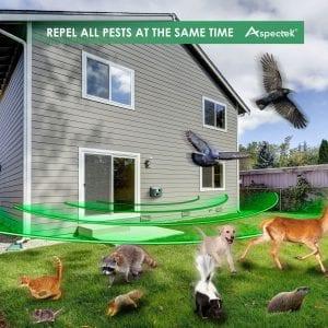 Ultrasonic Animal Repellers
